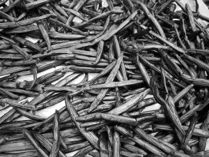 vanilla-beans-1254374